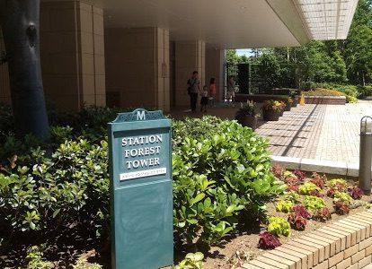 パークシティ武蔵小杉ステーションフォレストタワー、ミッドスカイタワーの中古内見に行ってきました。