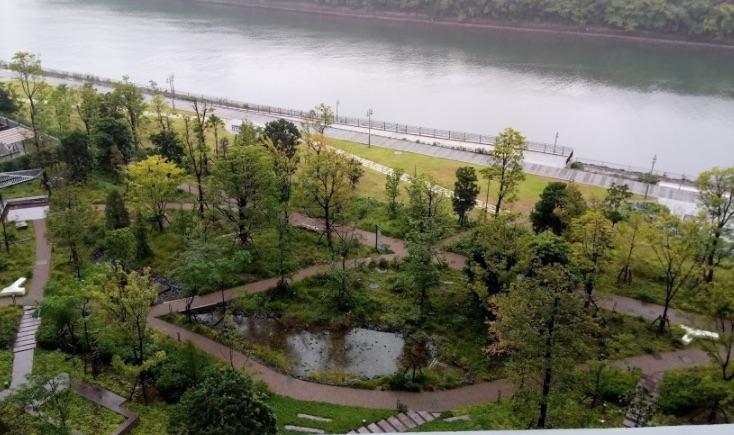 東側の眺望(プロムナード)の写真