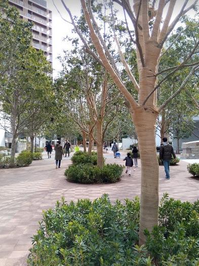 敷地内の歩道