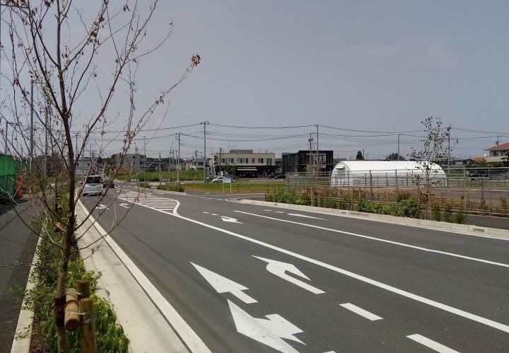 周辺道路の写真